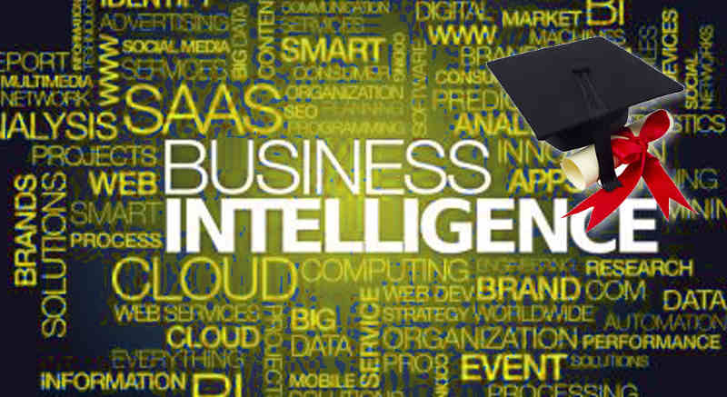 Master thesis business intelligence